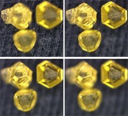視野全域に合焦したダイヤモンド画像
